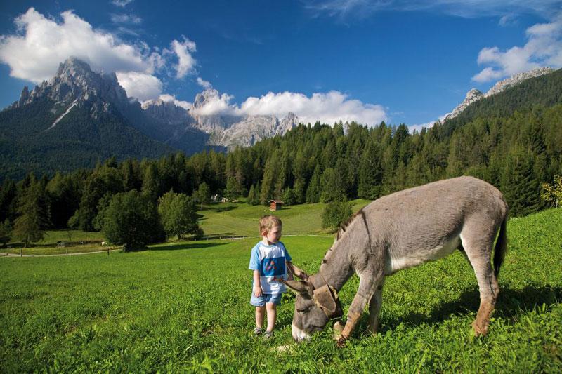 Trentino. Le vacanze rurali. Natura, relax, prodotti genuini