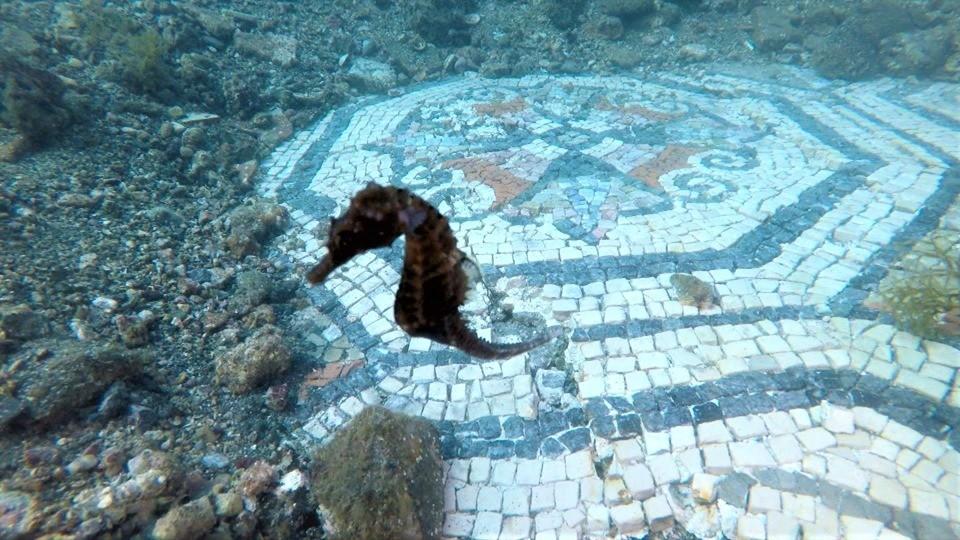 Parco archeologico baia napoli viaggiando italia for Case logic italia