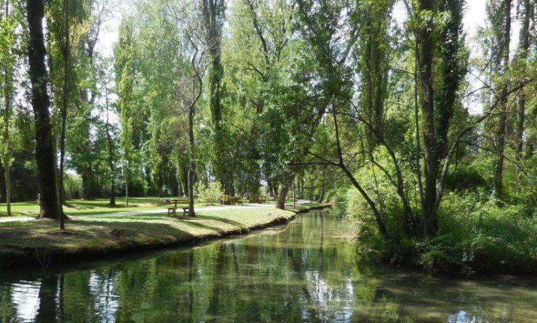 Umbria. Fonti del Clitunno, dove la natura si trasforma in Poesia e Benessere per l'anima