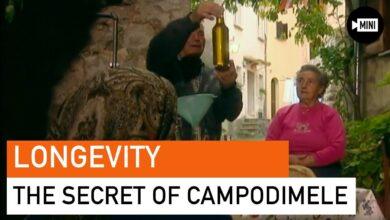 The Secret of Longevity in Campodimele Italy
