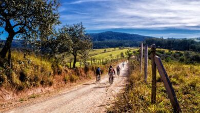 Itinerari e Sentieri da fare in Bici in Toscana. Ecco la lista (davvero) completa, +33 sentieri da fare