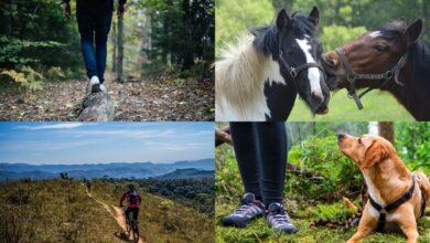 Tutti i sentieri da fare a Cavallo, in Mountain Bike, a Piedi e con il Cane nel Parco Nazionale della Majella