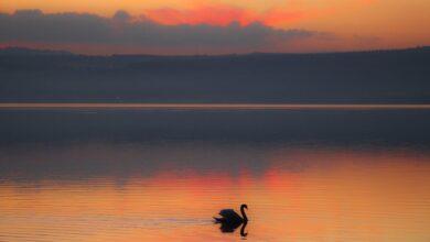 Lazio. Un rosa meraviglioso per un tramonto sul Lago di Bracciano