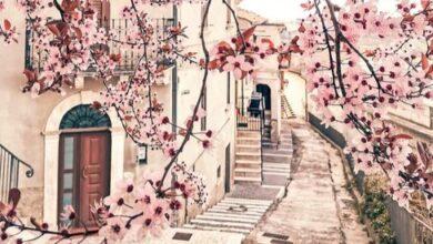 Pretoro. I colori di primavera arrivano nel Borgo del Lupo (guarda la foto originale)