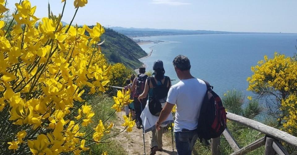 Eventi nella Marche. L'esplosione delle Ginestre e tuffo al mare nel Parco Naturale del Monte San Bartolo