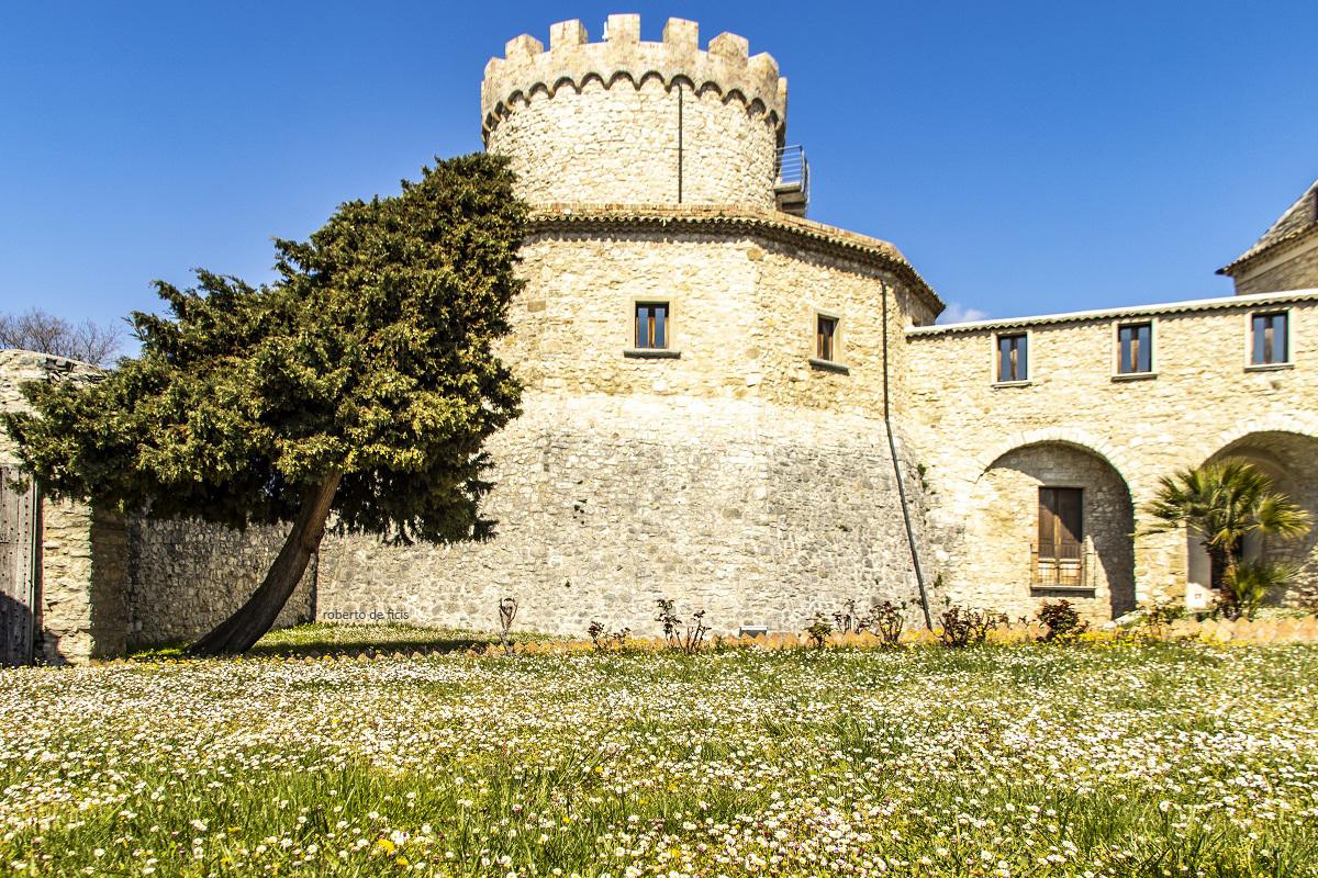 Margherite e fili d'erba. Primavera nel cortile del Castello Marchesale di Palmoli rit