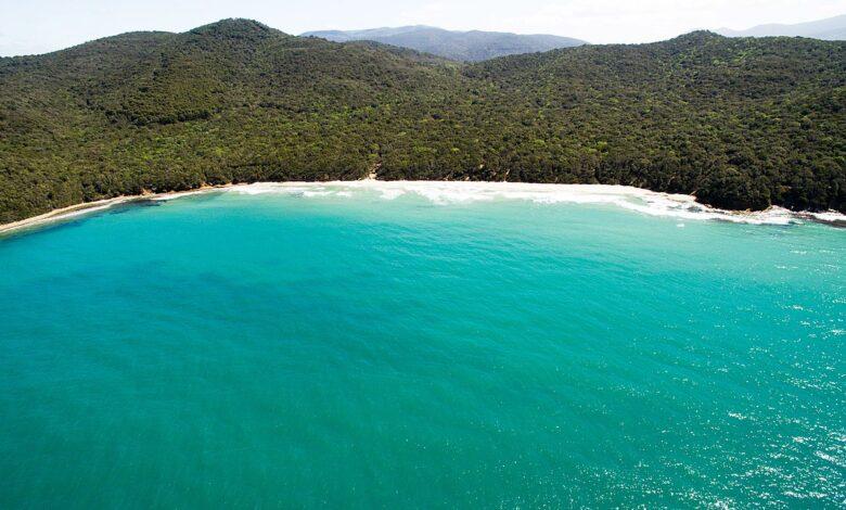 Sai come raggiungere Cala Violina, tra le più belle spiagge d'Italia Sai perché si chiama così