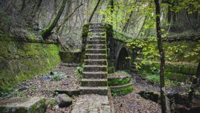 Un luogo davvero surreale. Ecco l'Antico Acquedotto di Colognole. Sai dove si trova