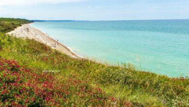 Mottagrossa, la Spiaggia più selvaggia di Vasto si tinge di turchese e smeraldo: come innamorarsi all'istante