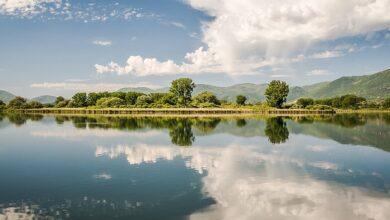 Sai quali sono i Parchi Nazionali e le Aree Protette che puoi visitare nel Lazio? Elenco completo