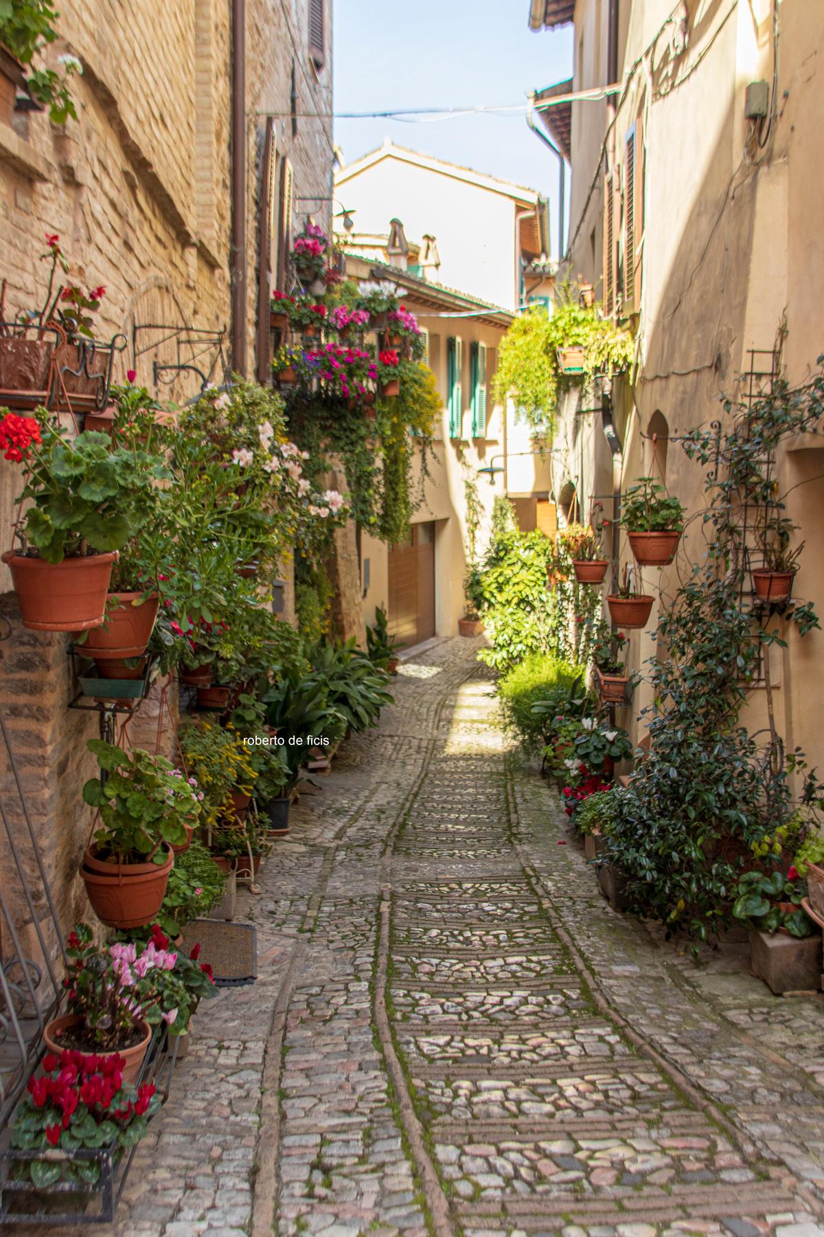 Itinerario per tutti. Fonti del Clitunno, le acque di Rasiglia e Spello il borgo dei fiori