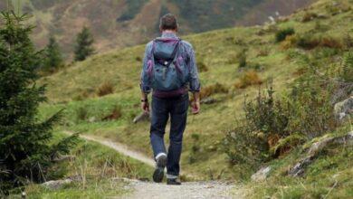 Itinerari di coaching®. Sono sempre più i manager e i professionisti che scelgono di formarsi a contatto con la natura