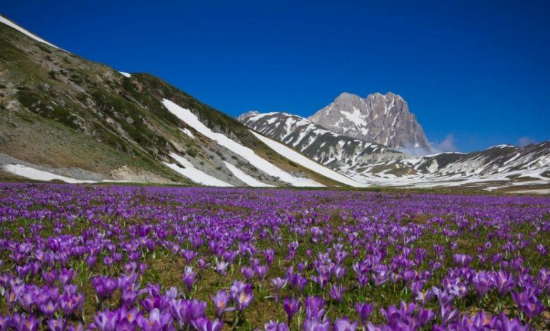 Parco Nazionale del Gran Sasso ecco la Lista Completa dei Sentieri Turistici (adatti a tutti) tra Montagna e Bellezza