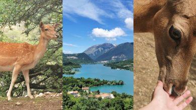 I Turisti raccontano Un'altra giornata alla scoperta del mio fantastico Abruzzo