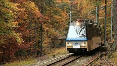 """Hai già viaggiato sul """"Treno del Foliage"""", che """"corre lento"""" in uno splendido paesaggio autunnale? Orar, costi e come prenotare"""