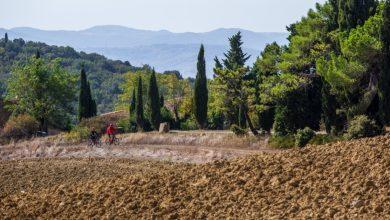 La Via Francigena in Toscana. Sai quali sono tutte le tappe da scoprire e visitare?