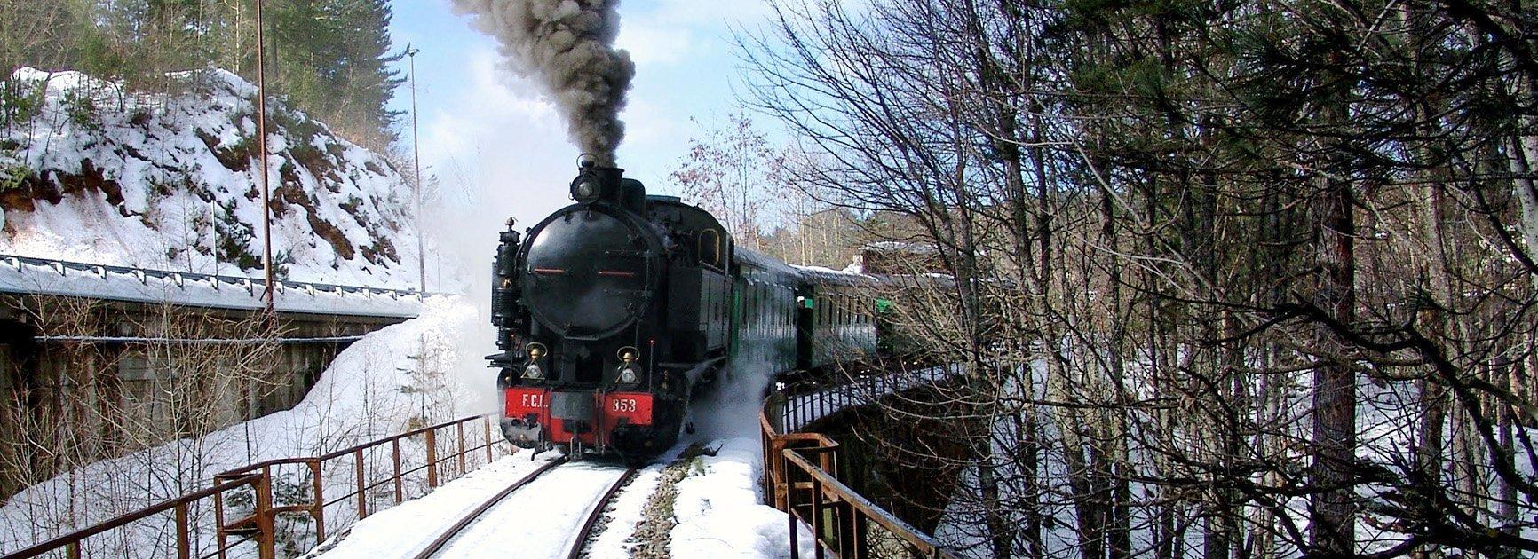 treno della sila tratto da httpswww.trenodellasila.it