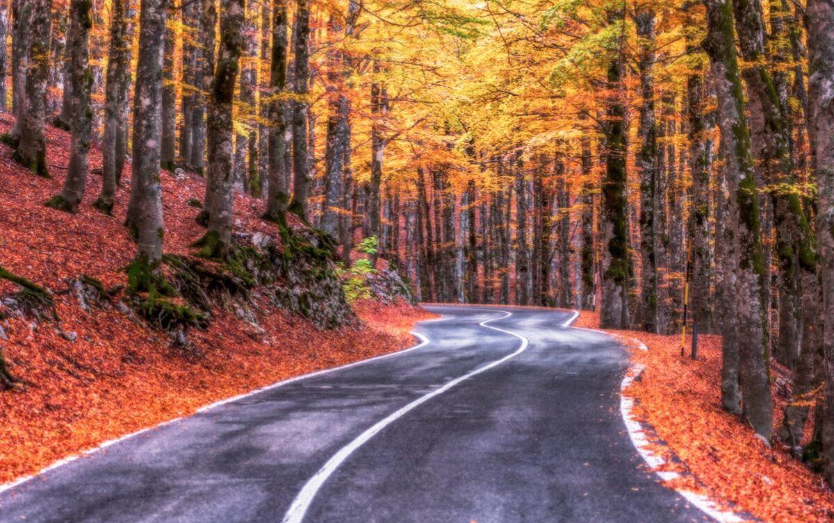 Forca d'Acero. Romantica strada su tornanti tra i Colori d'Autunno. Ci sei già stato?