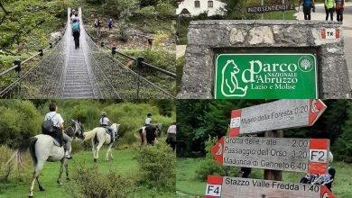 Hai già attraversato il Ponte Tibetano immerso nella Natura della Val Fondillo nel Parco Nazionale d'Abruzzo